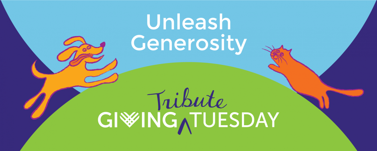 Giving Tribute Tuesday 2020 -- Unleash Generosity