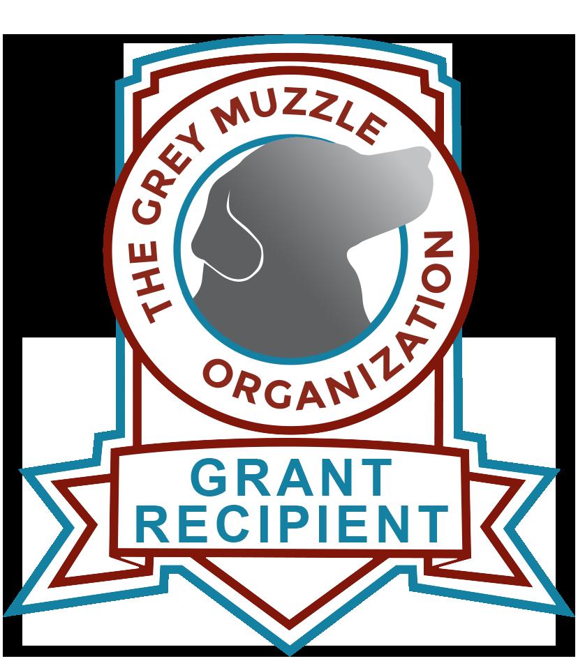 Gray Muzzle Organization