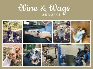 Wine and Wags Sunday at St. Anne's Crossing! @ St. Anne's Winery