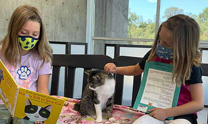 Children reading to cats